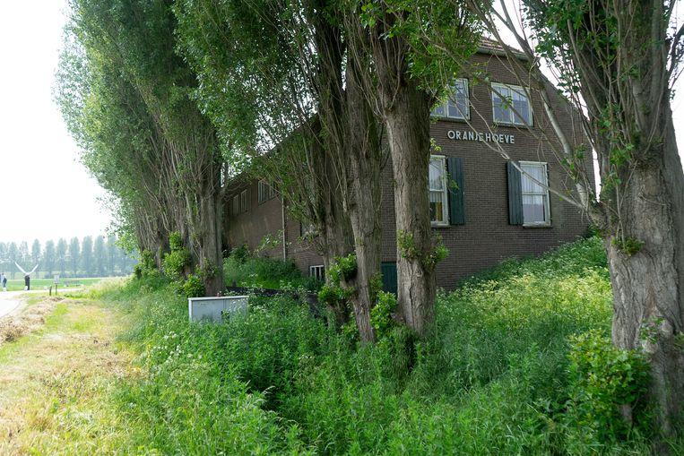 De Oranjehoeve in het Brabantse Hank.  Linksachter het monument Verzet, Vrijheid, Victory. Beeld Arno Haijtema