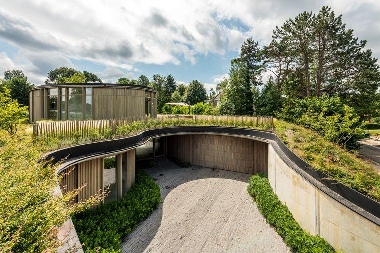 Met een leefruimte op tuinniveau en de inkom en slaapkamers op kelderniveau lijkt de woning volledig geïntegreerd in het omliggende landschap. Beeld Luc Roymans
