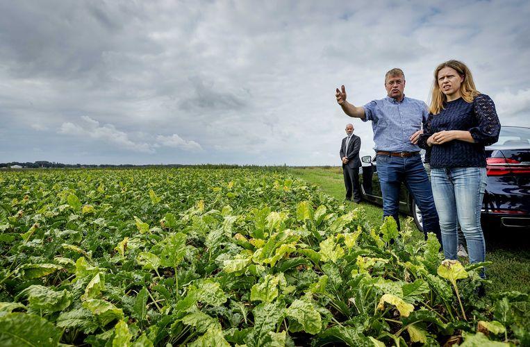 2018-08-28 11:41:32 1E EXLOERMOND - Minister Carola Schouten van Landbouw, Natuur en Voedselkwaliteit brengt een bezoek aan boer die getroffen is door de droogte. ANP ROBIN VAN LONKHUIJSEN Beeld ANP