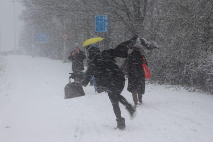 Een wandelaar kan zich in Brugge nauwelijks rechthouden door de hevige wind.