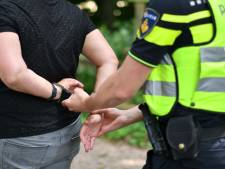 Man bedreigt en mishandelt medewerker prikbus in Etten-Leur