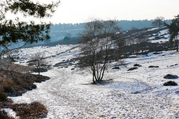 Waarschijnlijk heeft de Posbank zaterdag geen winters landschap. De Rotaryclub Rheden-Rozendaal zorgt daarom zelf voor (kerst)sfeer.