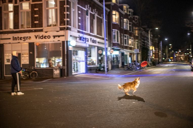 Avondklok in Groningen bij de Westerhaven. Beeld Harry Cock / de Volkskrant