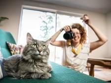 Vijf professionele dierenfotografen delen hun gouden tip