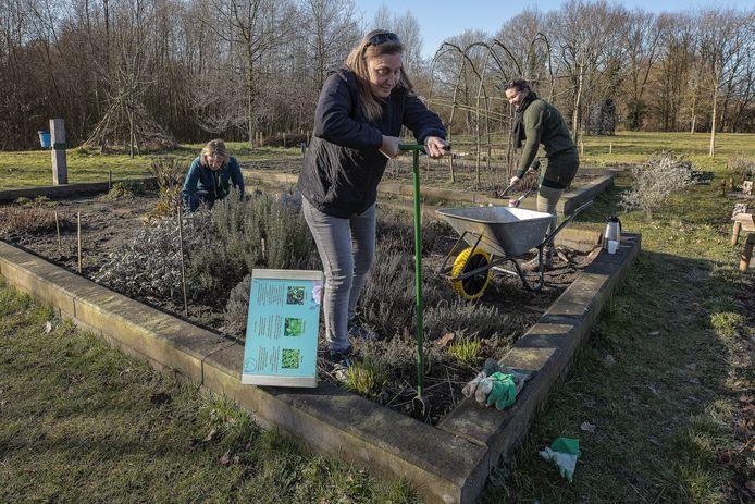 Greet van Sonsbeek, Ellen Buuts en Femke Wetzer (vlnr) zijn aan het werk zijn in de buurttuin
