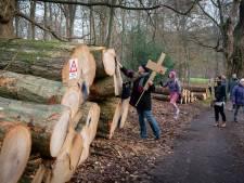Vrienden Sonsbeek stemden in 2018 in met kap bomen park Gulden Bodem