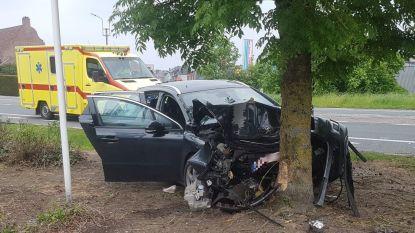 Zware klap op Astridlaan nadat bestuurster eventjes indut: drie personen naar ziekenhuis