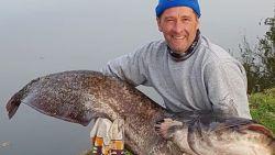 """Visser vangt meerval van bijna twee meter: """"Dit is wel mijn absoluut record"""""""