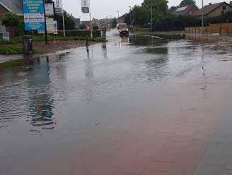 Verschillende straten in Zuiderkempen kunnen regenwater niet slikken