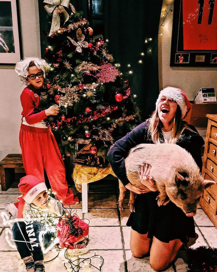Babette zal verwelkomd worden in een huis met drie kinderen en een ander hangbuikzwijn: Romeo.
