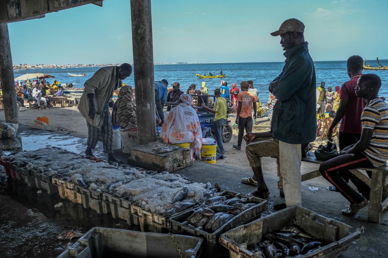De visserskade in de Senegalese hoofdstad Dakar was een week dicht. Export naar Europa is nog niet mogelijk. Beeld RV