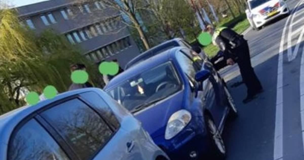 Hitsige eenden zorgen voor kettingbotsing met vier autos in Goes.