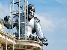 'King Kong' op toren stadhuis Apeldoorn