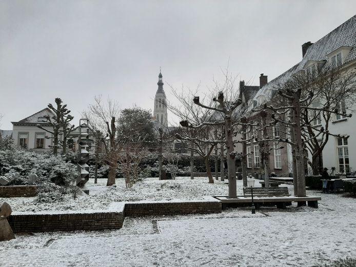 Een foto van de sneeuw in de Willem Merkxtuin met de Grote Kerk op de achtergrond.