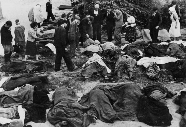 Inwoners van Lviv zijn, in 1941, op zoek naar doodgeschoten familieleden.  Beeld ullstein bild via Getty Images