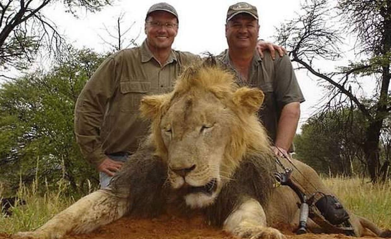 Walter Palmer (links) met een leeuw (niet Cecil).  Beeld REX by Shutterstock HH