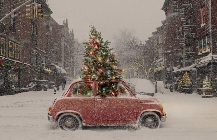 Kerstboom Met De Auto Vervoeren Zo Gaat Het Gemakkelijker En Veiliger Auto Ad Nl