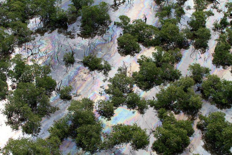 Olievervuiling in mangrovegebied bij Rio de Janeiro, Brazilië in 2018.  Beeld AP