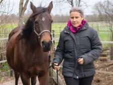 Erika start met instructeursopleiding western rijden: 'We moeten af van dat rodeo-imago'