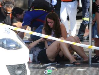 Steeds meer aanslagen met voertuigen