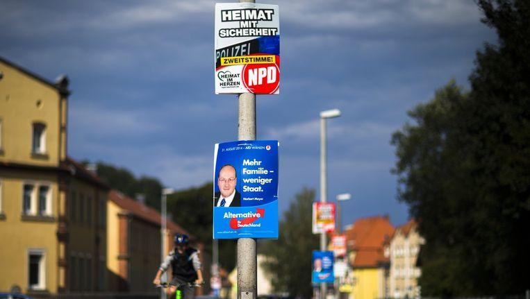 Verkiezingsposter van de NPD (boven) en de AfD (onder). Beeld REUTERS