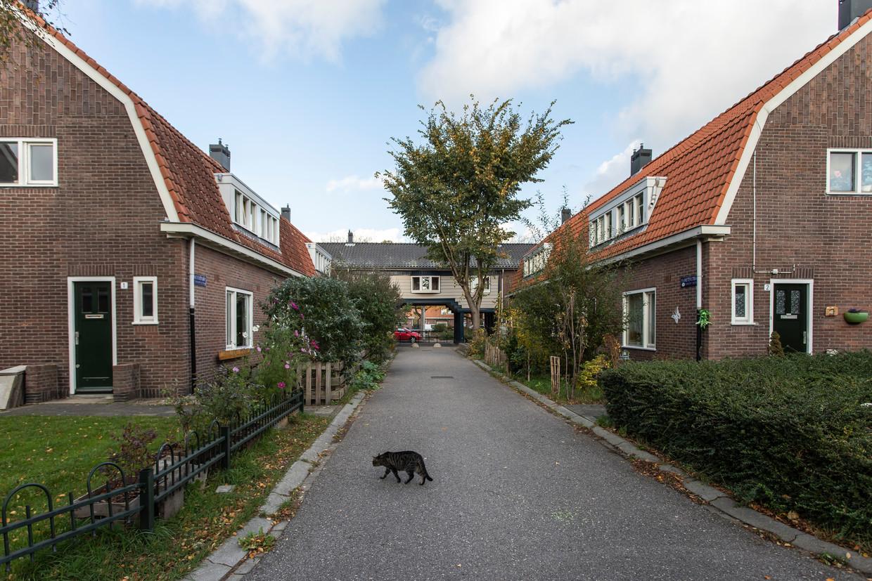 Tuindorp-Oostzaan. Beeld Dingena Mol