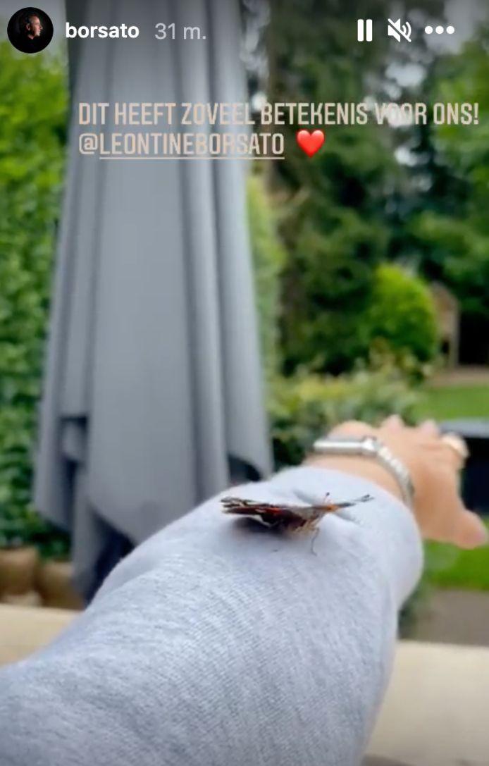 Borsato deelt een vlinder