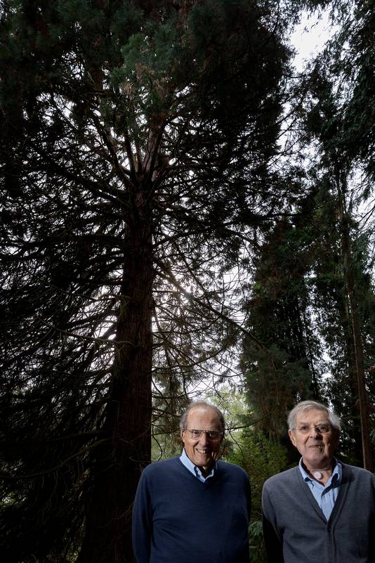 Frits Philips jr (links) en  Warner Philips  hebben bomen gekapt zonder vergunning op Landgoed de Wielewaal in Eindhoven.