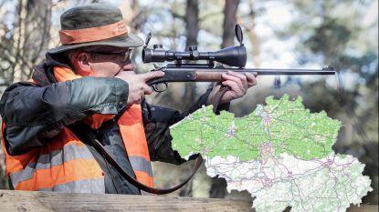 """""""We zitten met een serieus imagoprobleem"""": jagersvereniging tikt achterban op de vingers na rel rond wolvin Naya"""
