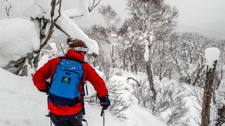 Off-piste skiën in Japan. Beeld RV