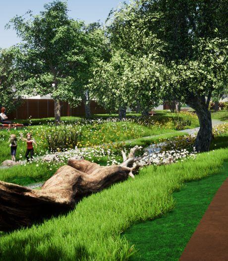 Hengelose Elsbeek: van ondoordringbare zwarte sloot naar groenblauwe long met wandelpad