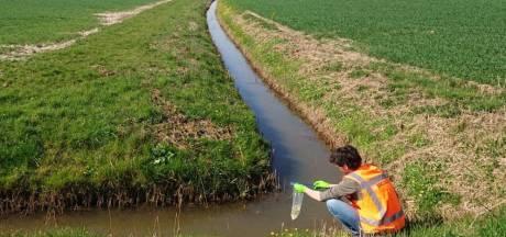 Arcadis zoekt sporen van modderkruiper langs 380 kV-tracé