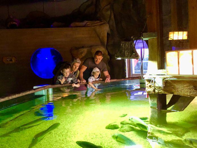 De familie Peeters uit Limburg bij het bassin waar je vissen kunt aanraken. Van links naar rechts: Bas (8), Inge, Tim (5) en Eddie.