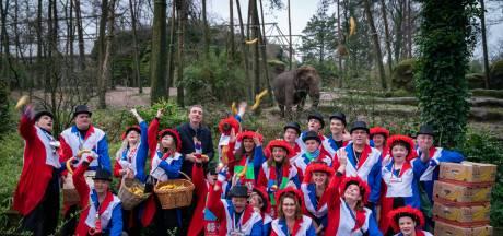 De Ernummers schenken 1500 bananen aan de olifanten in Burgers' Zoo