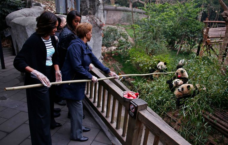 U.S. first lady Michelle Obama (L) and her mother Marian Robinson (R) feed apple to giant pandas as daughter Malia looks on during their visit at Giant Panda Research Base in Chengdu, Sichuan province, March 26, 2014. REUTERS/Petar Kujundzic (CHINA - Tags: ANIMALS POLITICS SOCIETY TPX IMAGES OF THE DAY) Beeld REUTERS