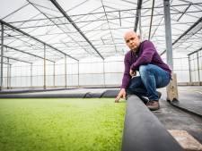 Huissen als proeftuin van Nederland: eten we straks allemaal kroos?