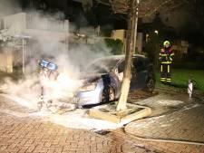 Nachtelijke brand in Geldermalsen verwoest auto, tweede voertuig op tijd gered