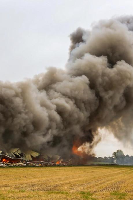 Zeker 4000 dode varkens en biggetjes bij zeer grote brand in Brabantse varkensstal