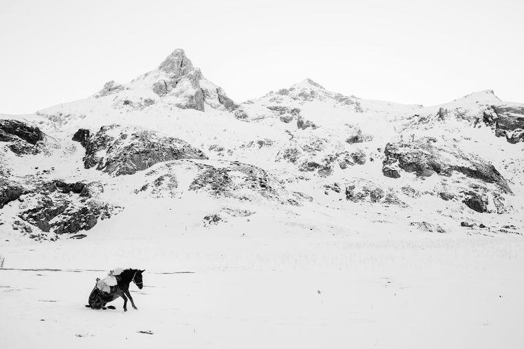 Foto uit de winnende reeks 'Whiteout' van Frederik Buyckx. Beeld Frederik Buyckx