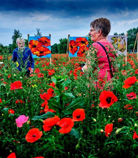 Bijzondere expositie in de natuur: kunst tussen de holes van de golfbaan in een veld van klaprozen