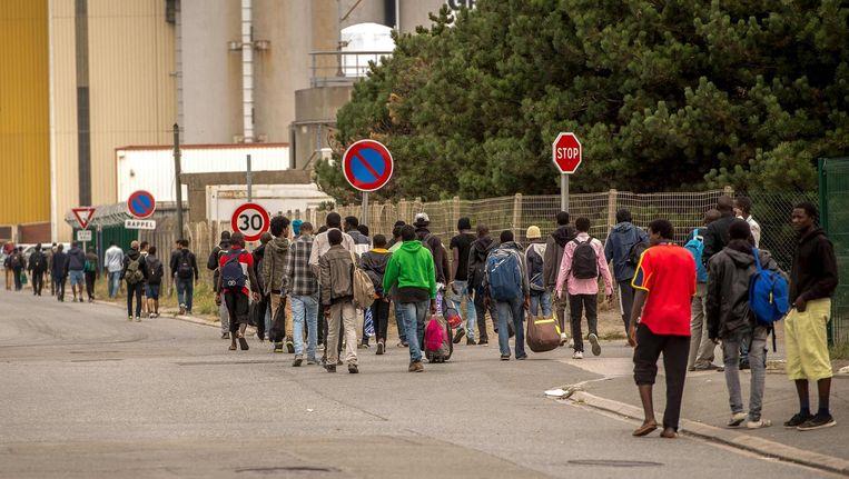 Vluchtelingen in Calais. Beeld ap