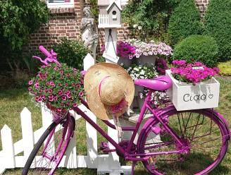 Gepimpte fietsen moeten Beringen-Mijn opfleuren