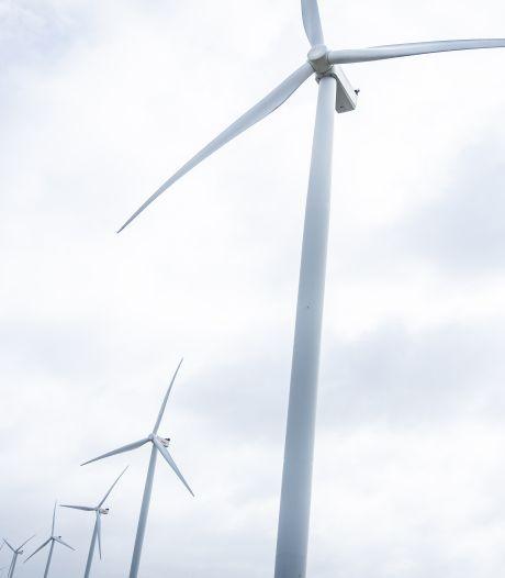 Windmolenplan De Rips weggeblazen, gemeentebestuur haalt bakzeil: 'Dit is fantastisch nieuws'