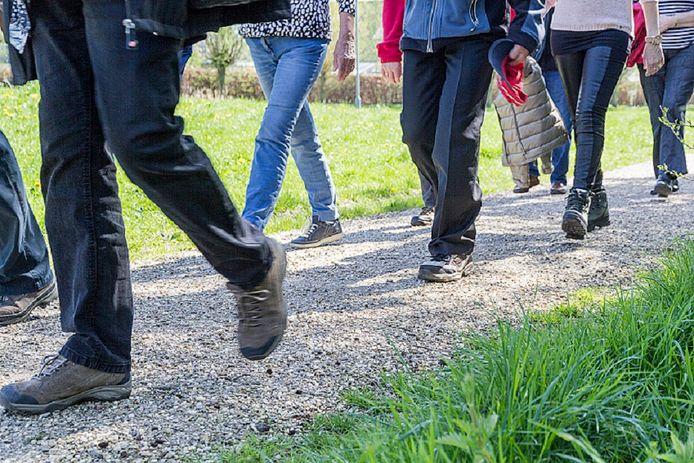 Het Wierdense wandelproject 'Stappen Vooruit' is een vervolg op de Diabetes Challenge, die in 2019 zo'n 40 deelnemers trok.