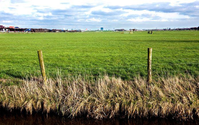 De polder Rijnenburg bij Utrecht, waar een energielandschap moet komen maar ook mogelijk een woonwijk.