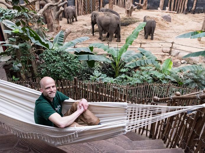 Verzorger Dominique Elsenaar slaapt elke nacht bij de olifanten.