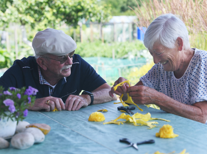 Theo Postema en Koos Verton (r) knutselen papieren bloemen.
