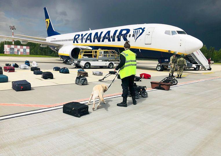 Een speurhond onderzocht zondag de bagage van de passagiers in het door Belarus 'gekaapte' Ryanair-vliegtuig, waarin oppositieleider Roman Pratasevitsj zat. Hij werd vervolgens ontvoerd en gearresteerd. Beeld AP