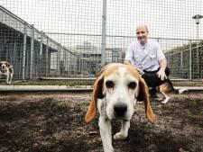Universiteit Utrecht zet steeds minder proefdieren in: 'We geven om ze, maar ze dienen ook een hoger doel'