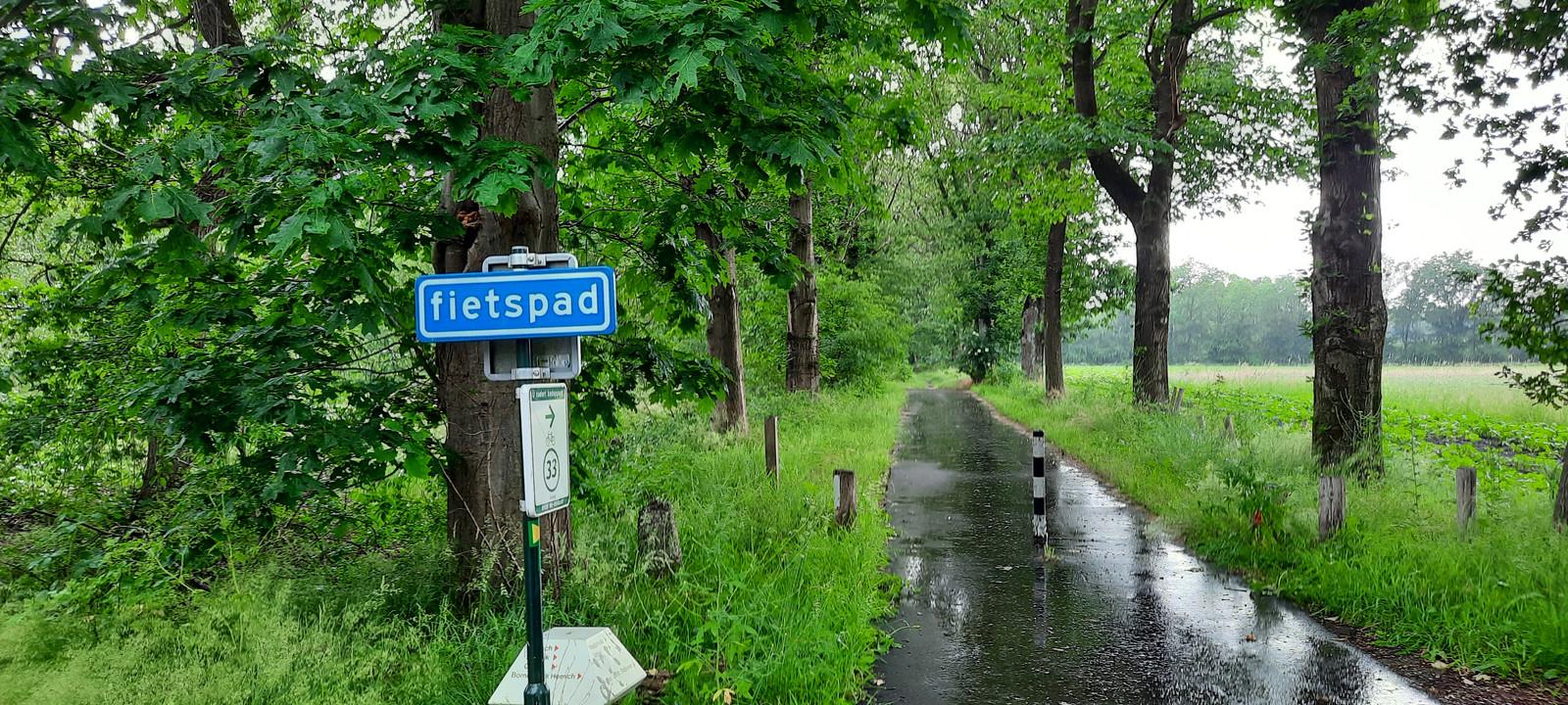 Een onverplicht fietspad in de Maashorst.